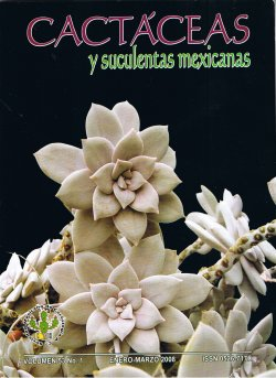 Cactaceas y suculentas pdf for Cactaceas y suculentas